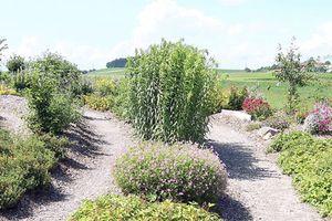 Labyrinthe Hofkirchen i. M. Hofkirchen i. M.
